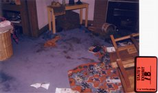 Crime scene photo, exhibit 18: Photo of Carmin Ross' living room, showing the trail of blood across the room and the overturned coffee table. Prosecutors believe the attack on Ross started near the laundry basket (at left) and ended at the far end of the couch (lower right, in the photo).