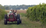 Greg Shipe takes Tim and Sarah Jackson, of Lawrence, on a ride through the vineyard Saturday at Davenport Winery in Eudora during the Kaw Valley Farm Tour.