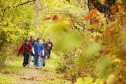 Hillcrest School sixth-graders walk through colorful vegetation Friday on their field trip to the Baker Wetlands. The students learned about macro-invertebrates, wetlands history, botany, movement and water chemistry during the trip.