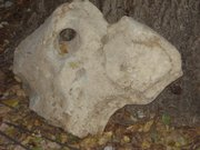 "The ""Jayhawk Rock"" has been in the Hillsdale Bank Bar-B-Q for several years. Employees rub it for good luck for football."