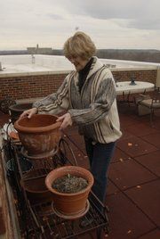 Carol Roberts begins work for a community garden on the rooftop of Hobbs-Taylor Lofts, Eighth and New Hampshire streets. Urban living presents a challenge for avid gardeners like Roberts, depending on sunlight and space restrictions. On the other hand, it offers a lower-maintenance lifestyle.