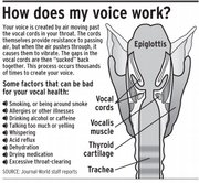 Your voice is created by air moving past the vocal cords in your throat.