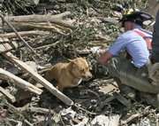 Picher firefighter Josh Stillwell frees a dog trapped in tornado debris in Picher, Okla., on Monday. Six people were killed and more than 100 homes destroyed by a tornado Saturday night.
