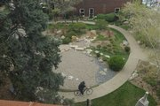 A bicyclist visits the Japanese Friendship Garden in downtown Lawrence. 