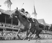 Affirmed, with jockey Steve Cauthen up, crosses the finish line to win the 104th Kentucky Derby in this 1978 photo from Louisville, Ky. Affirmed is the last horse to sweep the Derby, the Preakness and the Belmont Stakes for horse racing's Triple Crown.