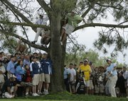 Spectators watch as Adam Scott, far right, chips out of the rough off the ninth fairway. Scott competed in the second round of the U.S. Open on Friday at Torrey Pines Golf Course in San Diego.