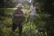 Iris Wilkinson, left, and Brooks Hanson, pick through their community garden in north Lawrence on July 22, 2008.