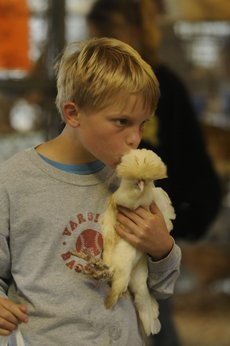 Thor Lyche 10, of the Kanwaka 4-H club, gives his chicken a lucky kiss before the poultry judging starts Wednesday morning at the Douglas County Fair.