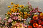 Just-picked flowers from the farm of Lynn Byczynski and Dan Nagengast are sold through local vendors and markets.