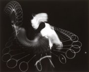 &quot;Swirls and Eddies of a Squash Stroke,&quot; by Harold Eugene Edgerton, is one of the images in &quot;Time/Frame&quot; at the Spencer Museum of Art.m