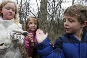 Quail Run Elementary School second-graders Ashley Coup, left, Caitlynn Grammer and Carsten Tabak show off a large worm, a small branch of blossoms and an insect carcass they found during an outing in the woods with their class.