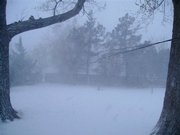 Snow started falling early this morning in Liberal, reducing visibility.
