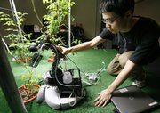 Massachusetts Institute of Technology student Huan Liu of Shanghai, China, positions a robot gardener near a tomato plant while demonstrating its capabilities in the Artificial Intelligence Laboratory on March 18 on the school's campus in Cambridge, Mass.