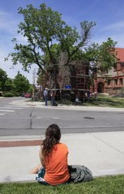 A passerby stops at 14th Street and Jayhawk Boulevard to observe as artist Patrick Dougherty, from Chapel Hill, N.C., builds a stick house around an elm tree on the Kansas University campus.