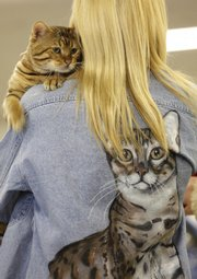 Gunnin' For Thrills, a 1-year-old Bengal cat, has a snuggle spot on breeder Janice Becker's shoulder at the American Cat Fanciers Association's cat show Saturday. The cat pictured on Becker's shirt back is another one of her cats.