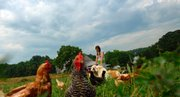 Julie Stinar, of Sharpsburg, Md., walks through a pasture on her Evensong Farm, where she raises chickens and grows produce to sell at farmers' markets.