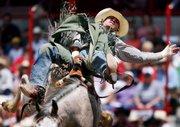 Judd Tinkle hangs on to his bronco during the bareback performance at the Cheyenne Frontier Days Rodeo on July 18 in Cheyenne, Wyo. Rodeos are generally seeing more spectators this year. Rodeos attract people in slow economies with close-to-home fun and affordable prices.