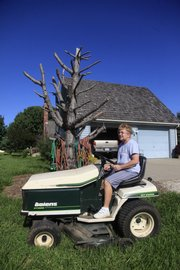 Sue Romero mows her lawn at her house south of Lawrence. The Romeros planted a row of Austrian pines 20 years ago, but those trees are now dying because of tip blight disease and environmental stress.