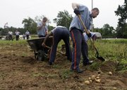 Inmates harvest potatoes at Southeastern Correctional Institution in Lancaster, Ohio, in this Aug. 4 photo. Some overtaxed food banks and underfunded governments are turning to prisoners for free labor to feed the hungry.