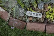 Andrea Zuercher has her herb garden clearly labeled, where she grows ingredients for pesto.