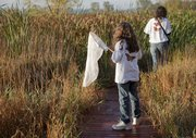 The only monarchs in site where on the back of Emily Dixon, 11, and her mother Pam's, sweatshirts as they participated Jayhawk Audubon Society and Monarch Watch butterfly tagging event Saturday, Sept. 19, at the Baker University Wetlands. A colder and wetter summer resulted in fewer wetlands flowers and a lower migrating monarch population this year for partipants.