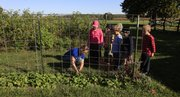 Gillian Luellen, left, garden manager for the Okanis Garden at the Prairie Moon Waldorf School, shows students how to pick spinach.