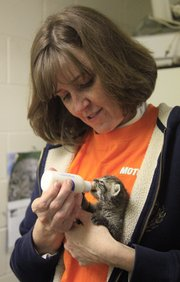 Pam Alexander, Lawrence, feeds Tiger the kitten at the Lawrence Humane Society. About 20 employees of the local Motorola office volunteered at the shelter Wednesday.