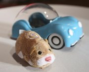 A hamster from Zhu Zhu Pets, by Cepia, is shown Oct. 1 at the Time to Play Holiday 2009 Most Wanted List event in New York. Zhu Zhu Pets, which retail for $8, are this year's bona fide must-have toy.