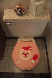 Debra Diehl's Santa toilet seat.