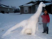 Andre and his Longneck dinosaur on December 20, 2009 in front of the house.