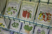 It's too early to plant a garden outdoors, but some seeds can be started inside to get a jump on growing season.