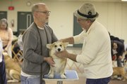 Steven Maynard-Moody Lawrence and his dog Fin, a Welsh corgi, get some judging ideas from judge John Cramer of Baldwin.