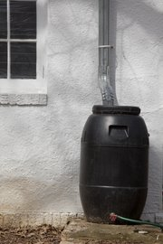 Rain barrel for home use with an added faucet and hose attached at the bottom.
