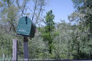 The mailbox outside Pat Murphy's property at 25511 Linwood Road is the easiest landmark for the road into Festy Fest.