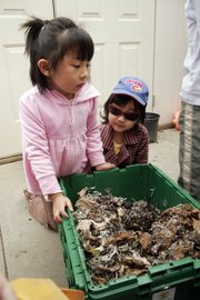 Emma Liu, left, and Catherine Zhao, both 5, prepare to feed worms that are breaking down compost at the Meadowlark Classroom at Hilltop.