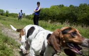 A basset hound named Clementine takes off after another dog as Lawrence residents Andrea Lochtefeld and Sean Malone supervise at the off-leash dog park near Clinton Lake.