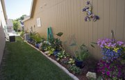 Judy LaFond fills a narrow space along the side of her house with flowers.