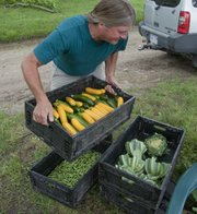 Irick prepares several crates of vegetables to take to the Lawrence Farmers' Market.