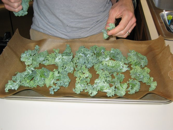 "The chef lays down torn bits of kale on parchment paper to create ""kale chips."""