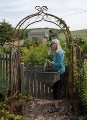Connie Spitz exits her garden under an arbor that frames her shed. Experienced gardeners like Spitz know how to combat garden pests or at least minimize losses.