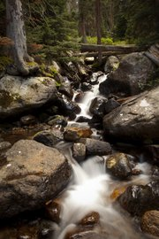 Water cascades down a stream near Ouzel Falls in Estes Park, Colo.