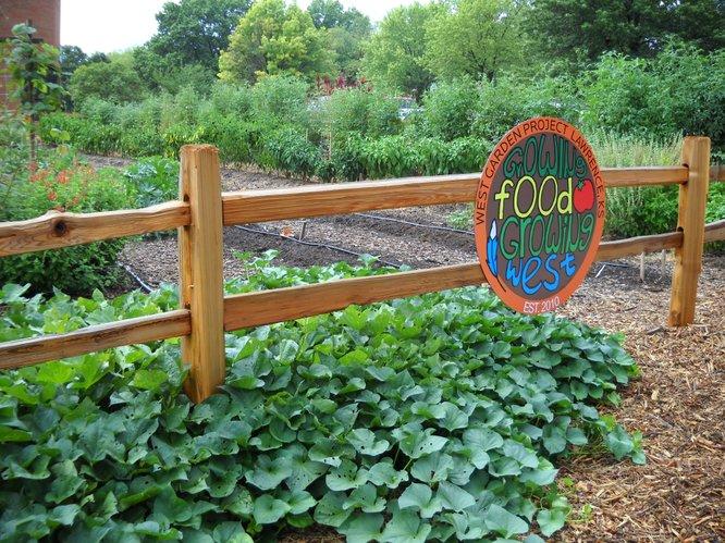 1000 Images About Children 39 S Garden Ideas On Pinterest