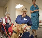 Rally, a certified service dog for ministerial purposes, mingles with residents and staff at Presbyterian Manor last month. From left are resident Carol Floersch, health services LPN Kristin Morrell, and chaplain Dottie Scholtz, Rally's owner. Rally started making the rounds with Dotty about six weeks ago when she started as chaplain at the facility.