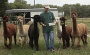 Bob Hey owns an Ad Astra Alpacas with wife Claudia. The farm, located near Baldwin, is on the Kaw Valley Farm Tour, which runs Saturday and Sunday in and around Lawrence.