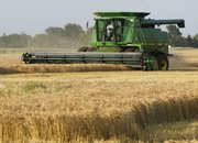 A farmer harvests wheat near Norwich. Demand and prices for U.S. wheat have soared since Russia announced it would ban wheat exports in August.