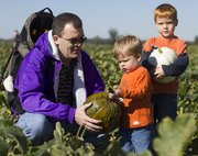 Scott Riekeman helps his son Lucas, 3, Lawrence, pick the perfect pumpkin Oct. 3 at Schaake's Pumpkin Patch, 1791 N. 1500 Road. At right is Lucas' brother, Adam, 6.