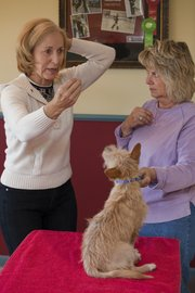 Nanette Dittrick, left, shows Cindy Well, Lawrence, how to keep treats out front of her dog's face while maintaining control on the back leash of her dog, Moxie. Dittrick, owner of Puppy Love Dog Training,  is helping train the dog get ready for a dog show.