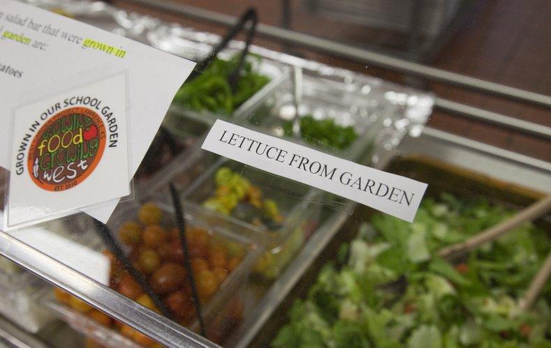 West junior high school garden provides 180 pounds of for Food bar garden