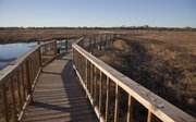 New walking trails and boardwalks are already in place for visitors.