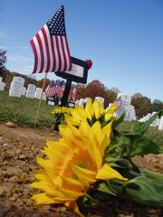 Sunflowers, a temporary marker and an American flag rest on the grave at Arlington National Cemetery of Army Spc. Thomas A. Moffitt, of Wichita, who was killed Oct. 24 in Afghanistan. Moffitt was laid to rest Nov. 12 in Section 60 of the national cemetery during a ceremony with full military honors.